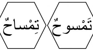 كلمات الدرس الثالث لغة عربية فصل أول صف أول