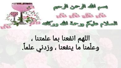 Photo of صف خامس فصل ثاني تربية إسلامية حل درس الرفق خير