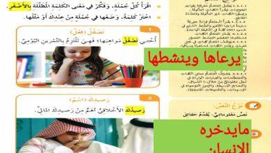 Photo of صف ثالث فصل ثاني لغة عربية حلول درس فكر في حياتك
