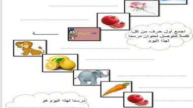 Photo of صف ثالث فصل ثاني حل درس سورة الفجر تربية إسلامية
