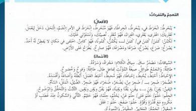 Photo of حل درس كن أكثر وعيا بغضبك لغة عربية صف سادس فصل ثاني
