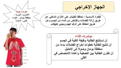 Photo of صف تاسع متقدم فصل ثاني أحياء تلخيص الجهاز الإخراجي