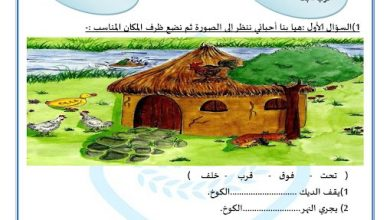 Photo of صف ثاني فصل ثاني ورق عمل لغة عربية ظرف الزمان والمكان
