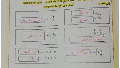 Photo of صف رابع فصل ثاني رياضيات حلول المراجعة الذاتية للوحدة الثامنة