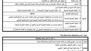 Photo of ملخص شامل الجهاز العصبي أحياء صف تاسع متقدم فصل ثاني