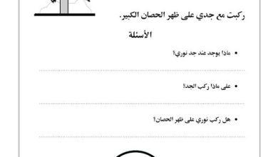Photo of صف أول فصل ثاني اللغة العربية تدريبات الحصان الكبير مع الاسئله