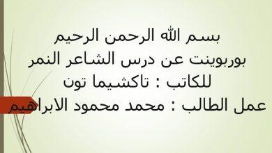 Photo of صف عاشر فصل ثاني اللغة العربية حلول درس الشاعر النمر