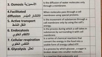 Photo of مفردات الوحدة الثامنة الخلية علوم منهج إنجليزي صف سادس فصل ثاني