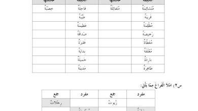 Photo of أوراق عمل التاء المربوطة والتاء المفتوحة لغة عربية صف ثاني فصل ثاني