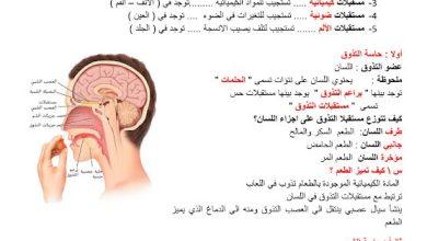 Photo of صف ثاني عشر عام فصل أول تلخيص أحياء درس الحواس