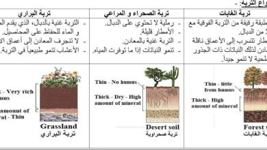 Photo of تقسيم أنواع التربة علوم صف سادس فصل ثالث