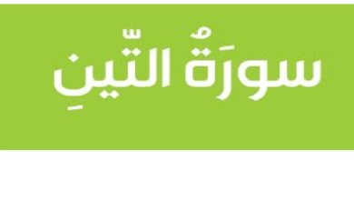 Photo of اجابة درس سورة التين بالصور لمادة التربية الاسلامية الصف الثالث