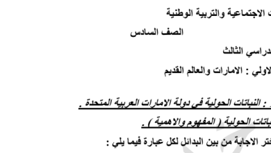 Photo of أوراق عمل ومراجعة لوحدة الإمارات والعالم القديم دراسات اجتماعية صف سادس فصل ثالث
