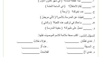 Photo of أوراق عمل تعزيزية لغة عربية صف ثاني فصل ثالث