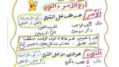 Photo of أوراق هامة لتأسيس الطفل في الأساليب والتراكيب لغة عربية صف ثاني فصل ثالث