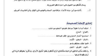 Photo of أوراق عمل الوحدة الثانية العراقة والإبداع دراسات اجتماعية صف رابع