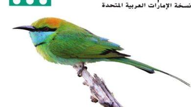 Photo of دليل المعلم علوم صف سابع فصل ثالث