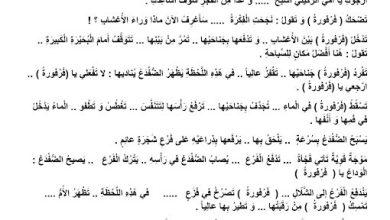 Photo of تدريبات مهارات القراءة قصة البطة فرفورة لغة عربية صف ثالث فصل ثالث