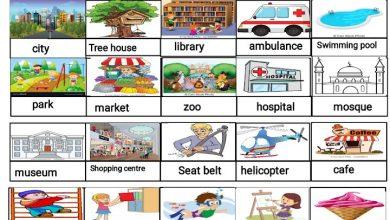 Photo of مفردات الوحدة التاسعة لغة إنجليزية صف ثالث فصل ثالث