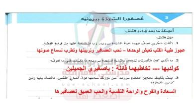 Photo of حل درس عصفورا السيدة بيرونيه  ( حل اخر )  لغة عربية