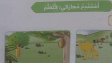 Photo of حل درس أحب مخلوقات ربي تربية إسلامية الصف الأول الفصل الثالث