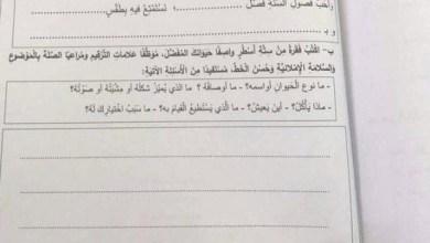 Photo of امتحان الكتابة نهاية الفصل الثالث 2017 لغة عربية صف ثاني