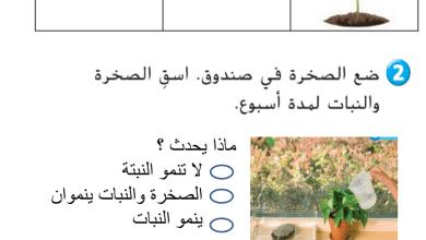 Photo of مراجعة الوحدة الخامسة الكائنات الحية والجمادات علوم صف ثاني فصل ثاني