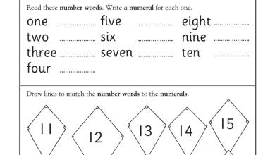 Photo of ورقة عمل الأرقام رياضيات منهج إنجليزي صف أول فصل أول