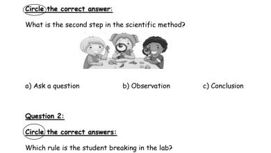 Photo of أوراق عمل علوم منهج إنجليزي صف رابع فصل أول