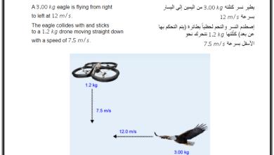 Photo of نموذج من أسئلة اختبارات الفيزياء (إيمسات) فصل أول صف ثاني عشر