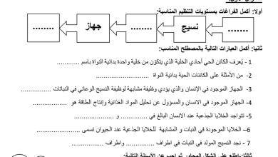 Photo of مراجعة درس مستويات التنظيم مع الإجابات علوم صف ثامن فصل ثاني