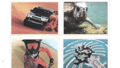 Photo of أوراق عمل لغة أنجليزية فصل ثالث صف تاسع منهج المجلس