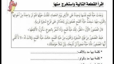 Photo of أوراق عمل في مهارات اللغة العربية للصف الرابع لامتحان الفصل الثالث