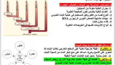 Photo of مراجعة الوحدات 18 و19 و20 أحياء فصل ثالث صف حادي عشر