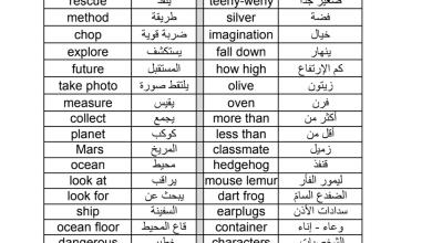 Photo of مفردات الوحدة التاسعة لغة انجليزية Big and small للصف الرابع