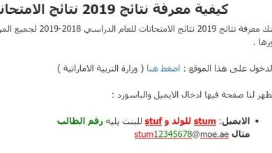 كيفية معرفة نتائج 2019 نتائج الامتحانات 2019