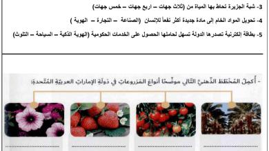 Photo of أوراق عمل مراجعة للفصل الثاني والثالث دراسات اجتماعية صف رابع