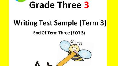 Photo of ملف مراجعة لامتحان نهاية الفصل الثالث يتبعه الحل لغة إنجليزية صف ثالث