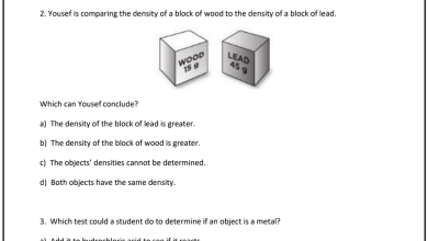 Photo of أوراق مراجعة الفصل الثالث علوم منهج إنجليزي صف خامس