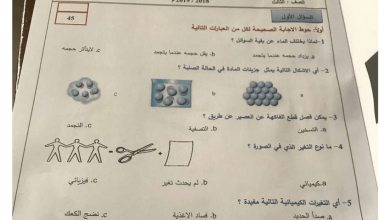Photo of امتحان 2018 – 2019 علوم  نهاية الفصل الثالث  صف ثالث