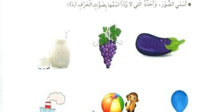 Photo of حل درس بوبي البومة الحكيمة لغة عربية صف اول