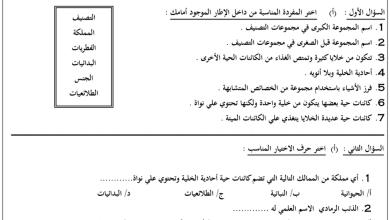 Photo of ورق عمل التصنيف علوم صف رابع فصل أول