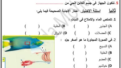 Photo of أوراق عمل تنظيم الخلايا علوم صف رابع فصل أول