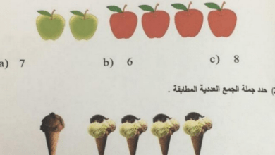 Photo of امتحان نهاية الفصل الأول 2018 – 2019 رياضيات صف أول