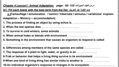 Photo of أوراق عمل مراجعة يتبعها الحل علوم الجزء الثاني منهج إنجليزي صف رابع فصل أول