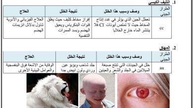 Photo of ملخص 2 الوراثة المعقدة والوراثة البشرية أحياء صف حادي عشر متقدم فصل أول