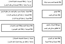 Photo of أوراق عمل محلولة علوم صف سادس فصل ثاني