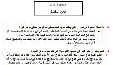 Photo of حل درس الابن المفضل (الولد الذي عاش مع النعام)