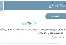 Photo of حل درس الدب الأشهب (رواية عساكر قوس قزح)