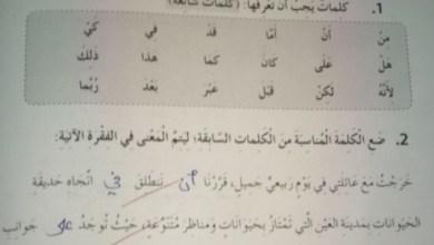 Photo of حل وحدة دع الخوف وابدا بالحياة لغة عربية للصف الخامس